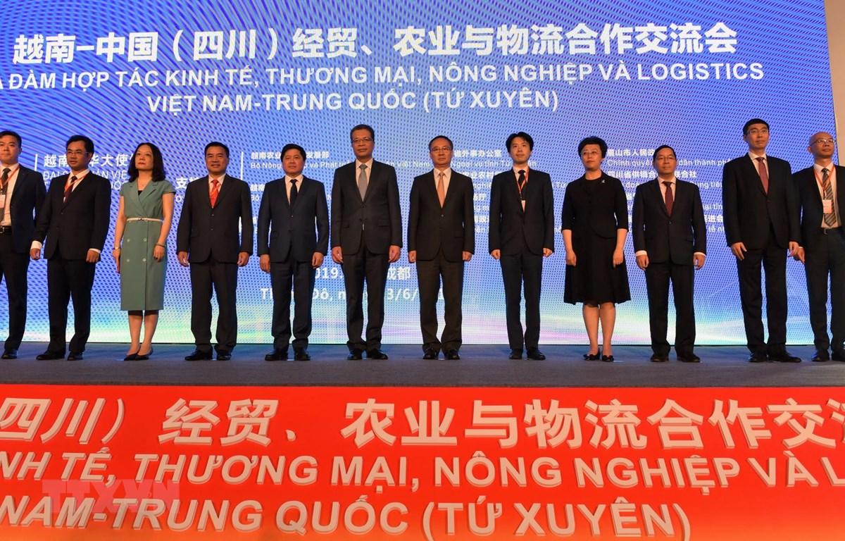 Các đại biểu chụp ảnh chung. (Ảnh: Lương Tuấn/TTXVN)