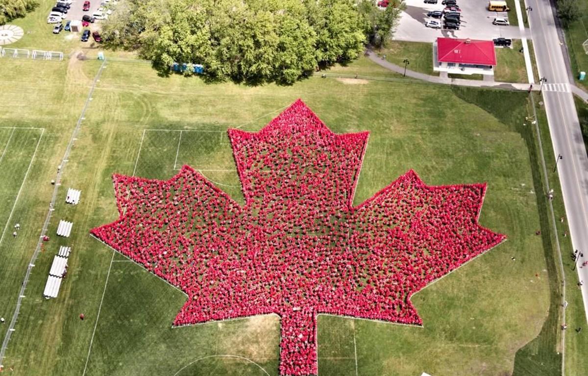 """3.942 người mặc áo T-shirt đỏ đã tạo nên """"bức tranh"""" lá phong đặc biệt lớn nhất thế giới. (Nguồn: globalnews.ca)"""