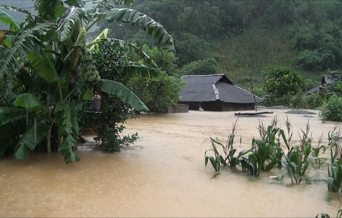 Nhiều nhà dân ở huyện Vân Hồ, tỉnh Sơn La bị ngập sâu trong nước. (Ảnh: TTXVN phát)