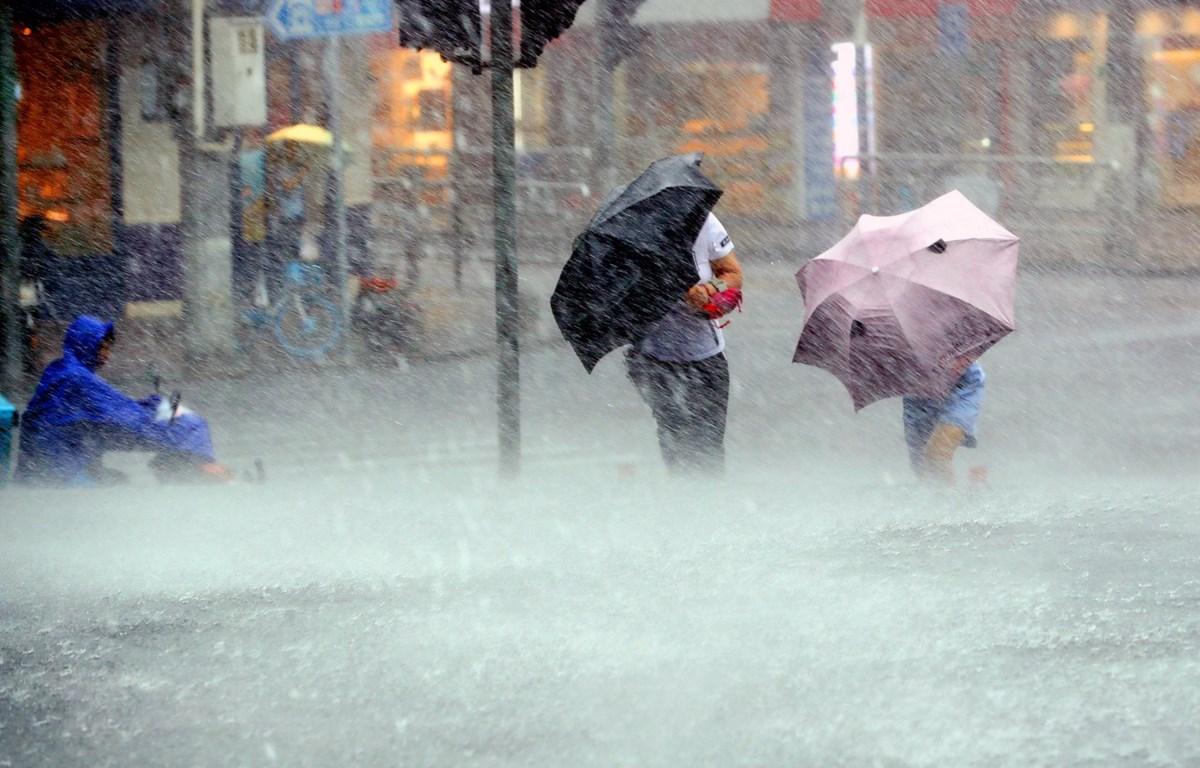 Mưa lớn do ảnh hưởng của bão Lekima tại thành phố Thượng Hải, Trung Quốc. (Ảnh: THX/TTXVN)