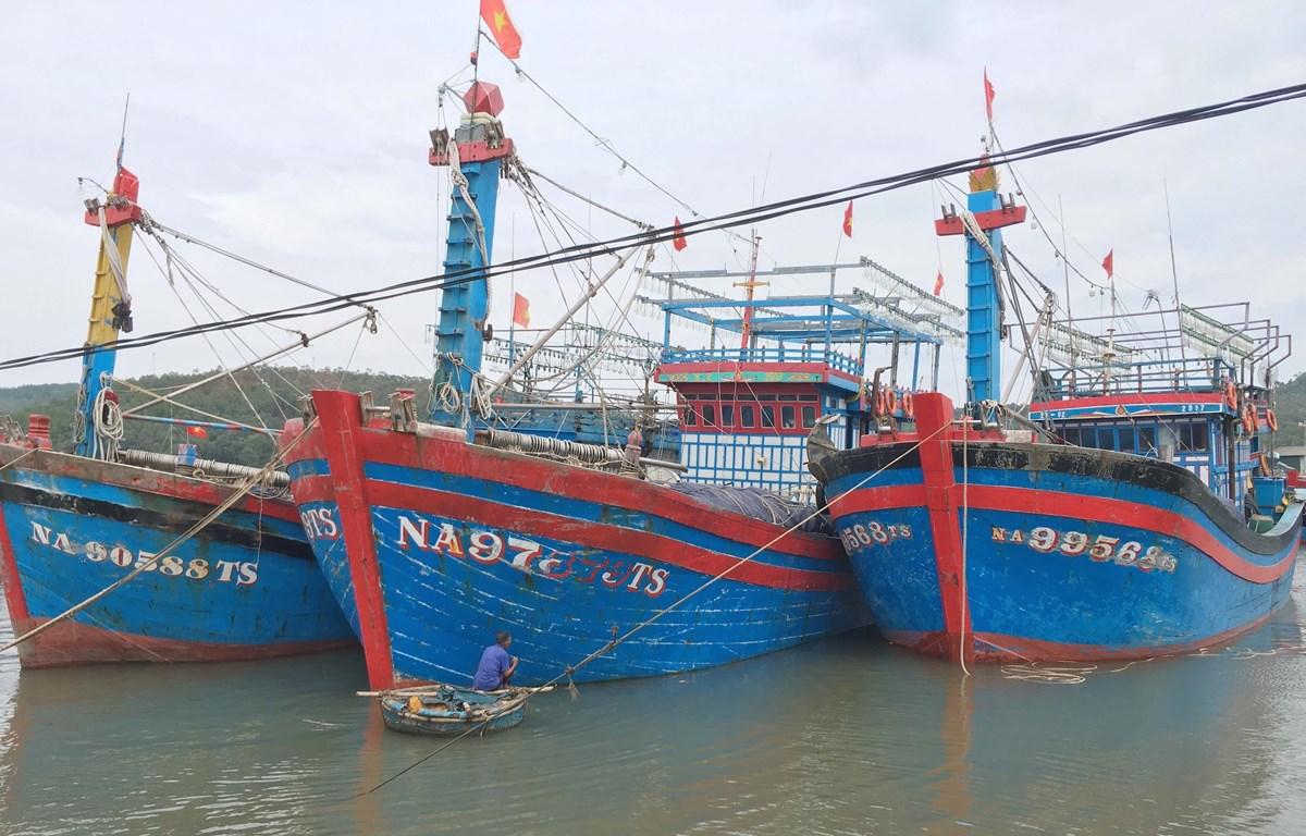 Nhiều tàu thuyền neo đậu an toàn tại cảng cá Lạch Quèn, xã Quỳnh Thuận, huyện Quỳnh Lưu. (Ảnh: Nguyễn Oanh/TTXVN)