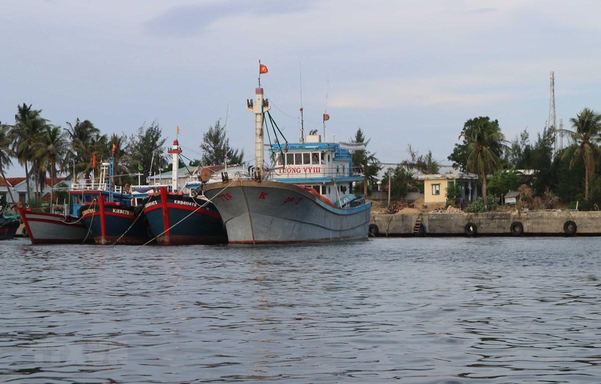 Tàu thuyền đánh bắt thuỷ sản của ngư dân neo đậu ở cảng để tránh trú. (Ảnh: Nguyễn Dũng/TTXVN)