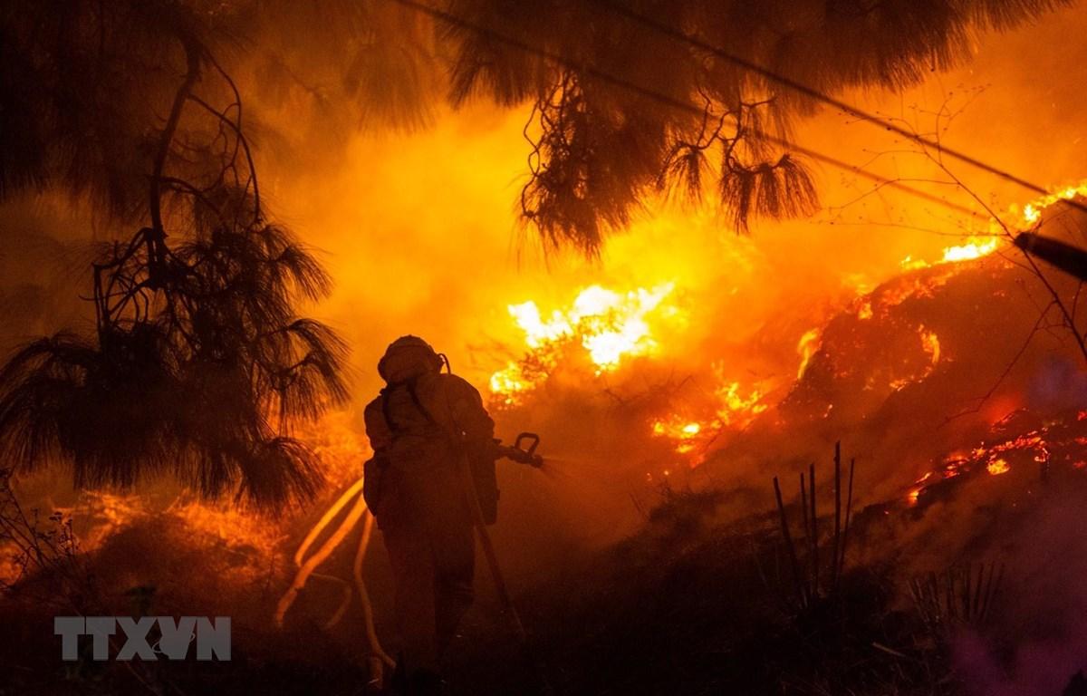 Lính cứu hỏa nỗ lực dập lửa cháy rừng lan rộng tại Los Angeles, Mỹ. (Ảnh: THX/TTXVN)
