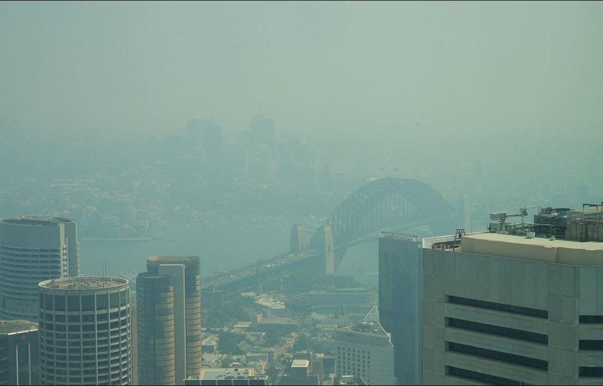 Sydney chìm trong khói mù dày đặc. (Nguồn: AP)