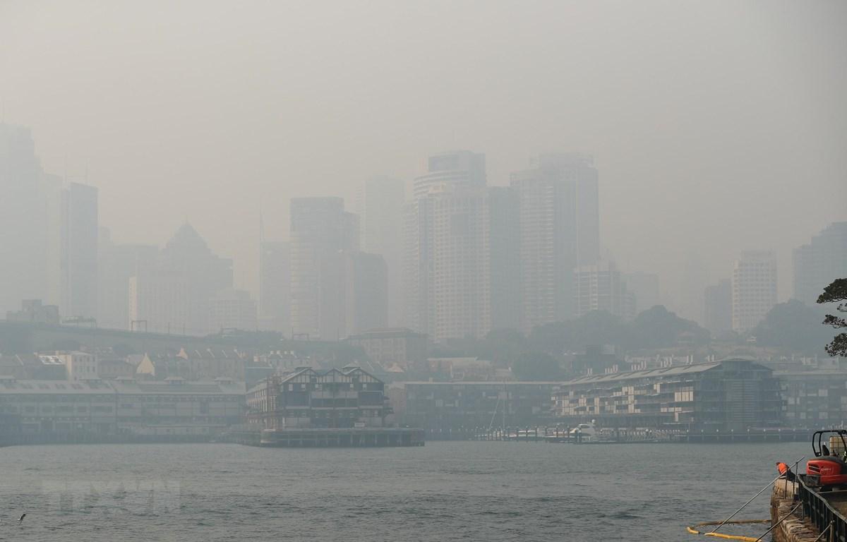 Khói bụi từ các đám cháy rừng bao phủ thành phố Sydney. (Ảnh: THX/TXTVN)