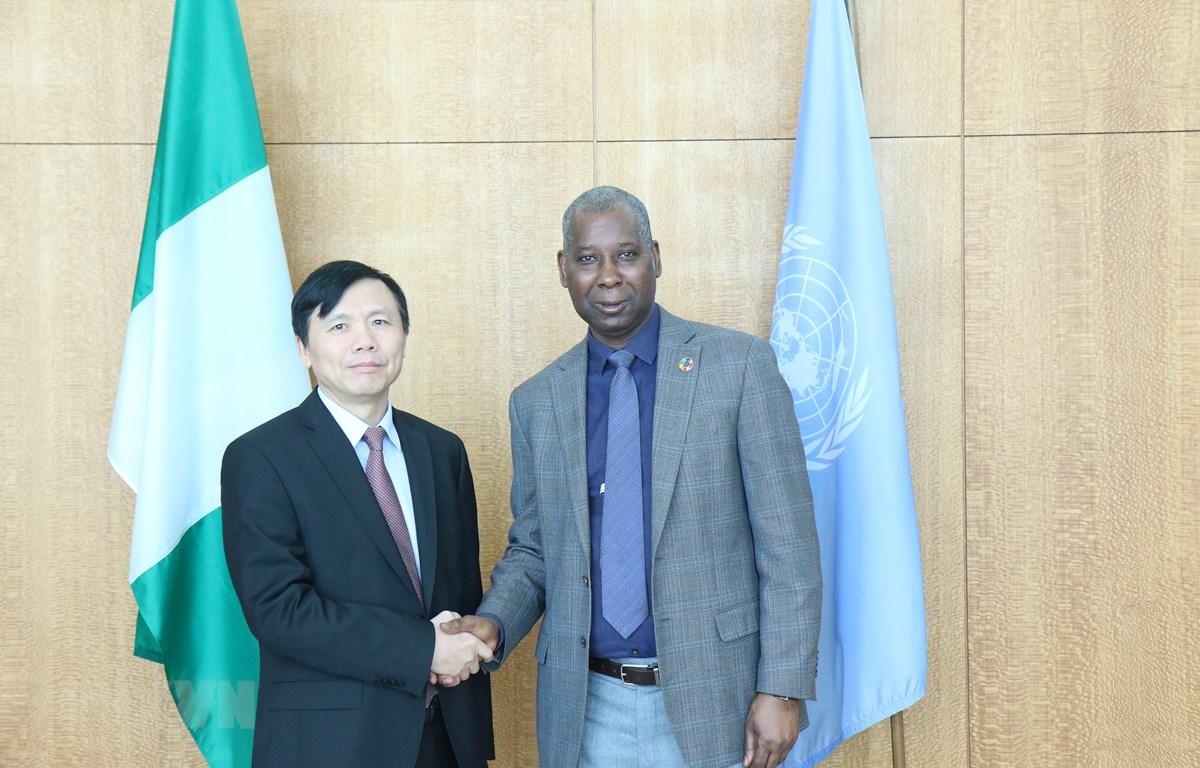 Đại sứ Đặng Đình Quý gặp ông Tijjani Muhammad Bande, Chủ tịch Đại hội đồng Liên Hợp Quốc. (Ảnh: Hữu Thanh/TTXVN)