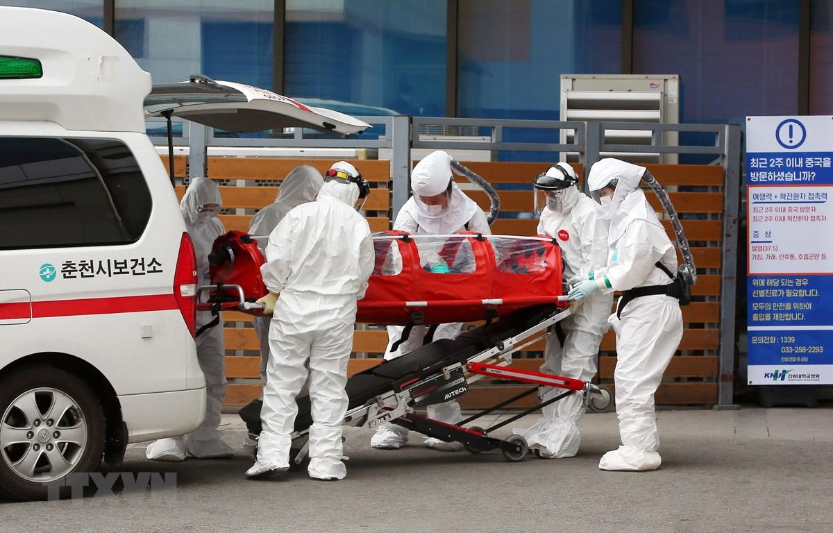 Nhân viên y tế chuyển bệnh nhân nhiễm dịch viêm đường hô hấp cấp COVID-19 tới bệnh viện ở thành phố Chuncheon, ngày 22/2. (Ảnh: AFP/TTXVN)