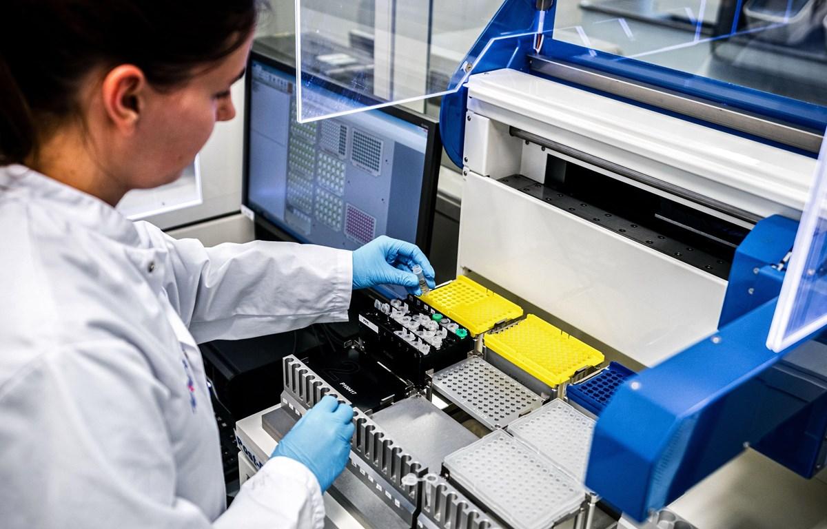 Nhân viên y tế phân tích mẫu bệnh phẩm của bệnh nhân nhiễm COVID-19 tại một phòng thí nghiệm ở Roosendaal, Hà Lan. (Ảnh: AFP/TTXVN)