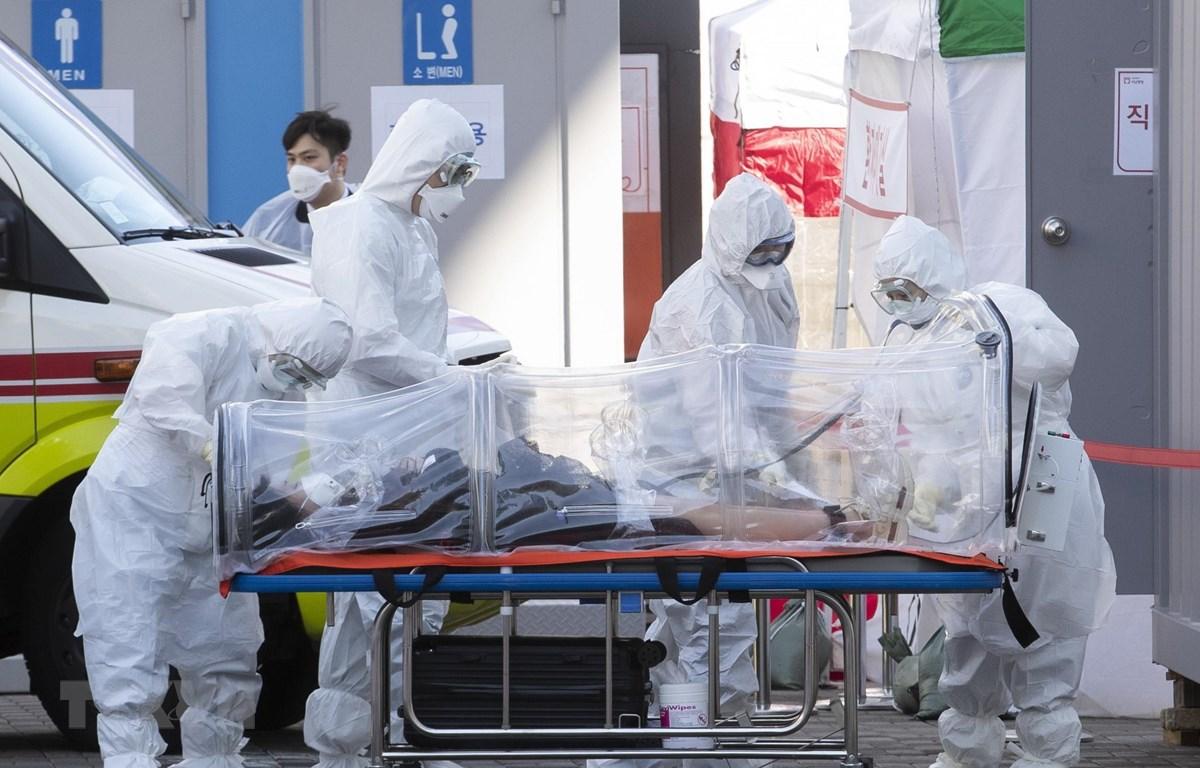 Nhân viên y tế chuyển bệnh nhân nhiễm COVID-19 tới bệnh viện. (Ảnh: THX/TTXVN)