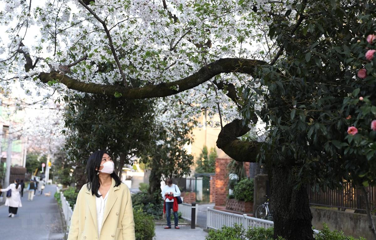 Người dân đeo khẩu trang phòng lây nhiễm COVID-19 tại Tokyo, Nhật Bản, ngày 22/3. (Ảnh: THX/TTXVN)