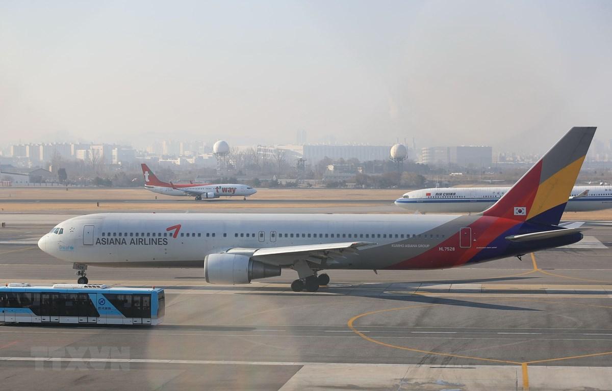 Máy bay của hãng hàng không Asiana Airlines tại sân bay Gimpo, Seoul, Hàn Quốc. (Ảnh: Yonhap/ TTXVN)