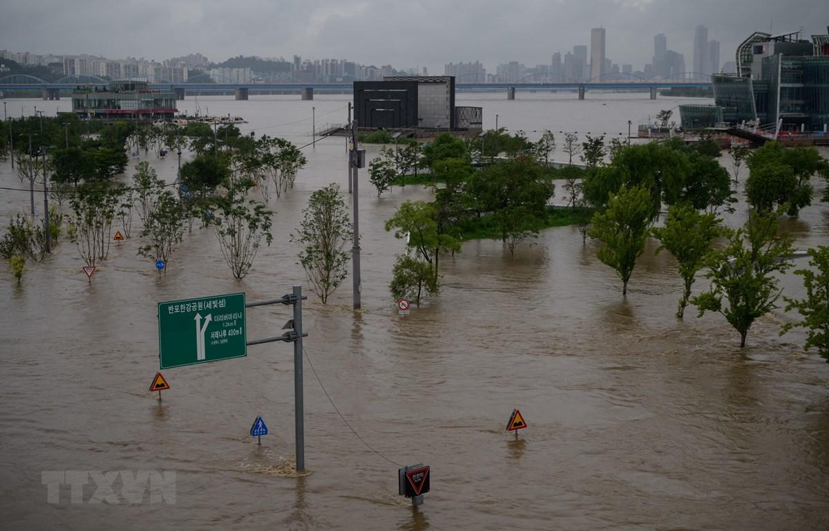 Mưa lớn tại công viên bên bờ sông Hàn ở Seoul, Hàn Quốc, ngày 3/8. (Ảnh: AFP/TTXVN)