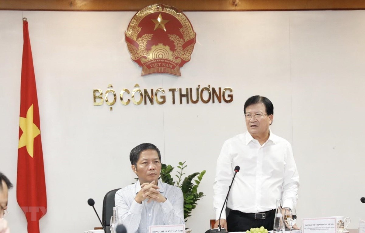 Phó Thủ tướng Trịnh Đình Dũng phát biểu tại buổi làm việc. (Ảnh: Trần Việt/TTXVN)
