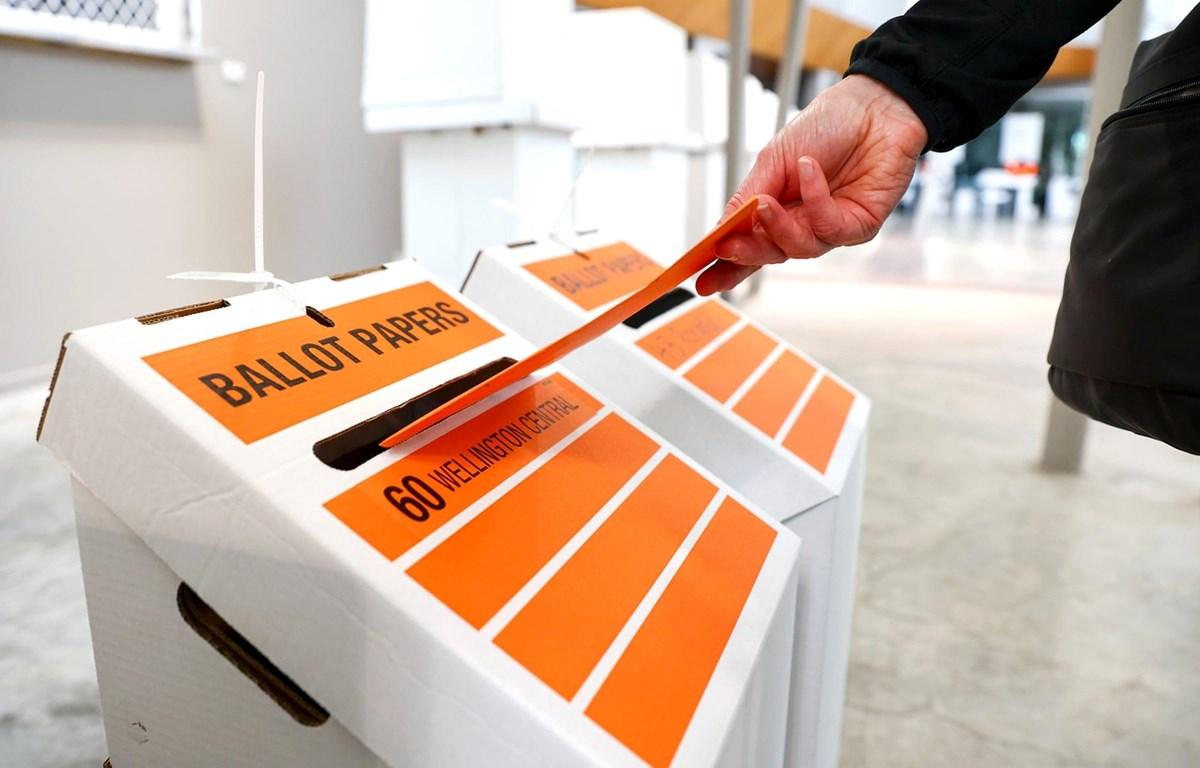 Cử tri New Zealand đi bỏ phiếu. (Nguồn: Getty Images)