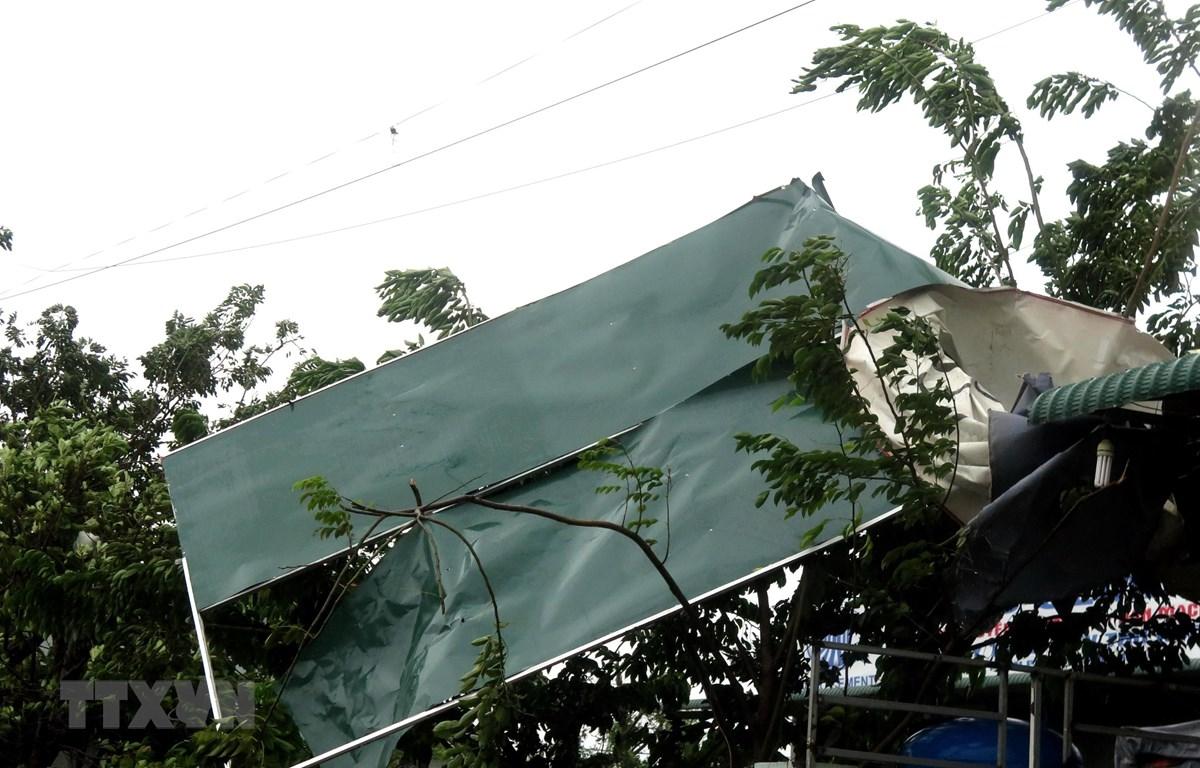Cây to bật gốc ngã đổ, nhiều mái tôn tại nhà dân bị gió cuốn phăng. (Ảnh: Lê Ngọc Phước/TTXVN)