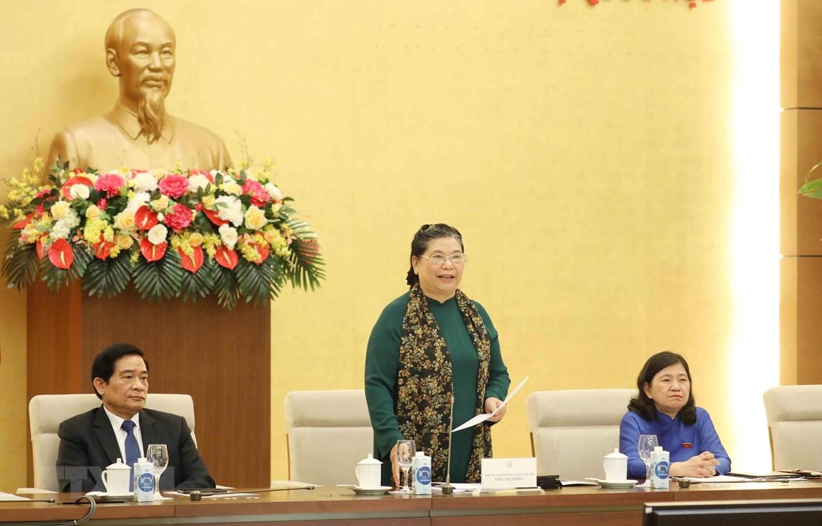 Phó Chủ tịch Thường trực Quốc hội Tòng Thị Phóng phát biểu tại buổi gặp mặt. (Ảnh: Phương Hoa/TTXVN)