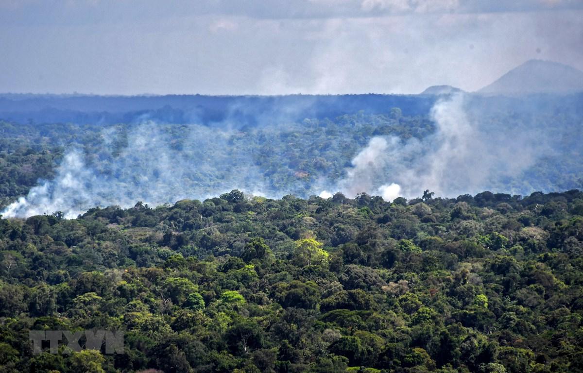 Khói bốc lên từ đám cháy rừng Amazon ở Oiapoque, bang Amapa, Brazil. (Ảnh: AFP/TTXVN)