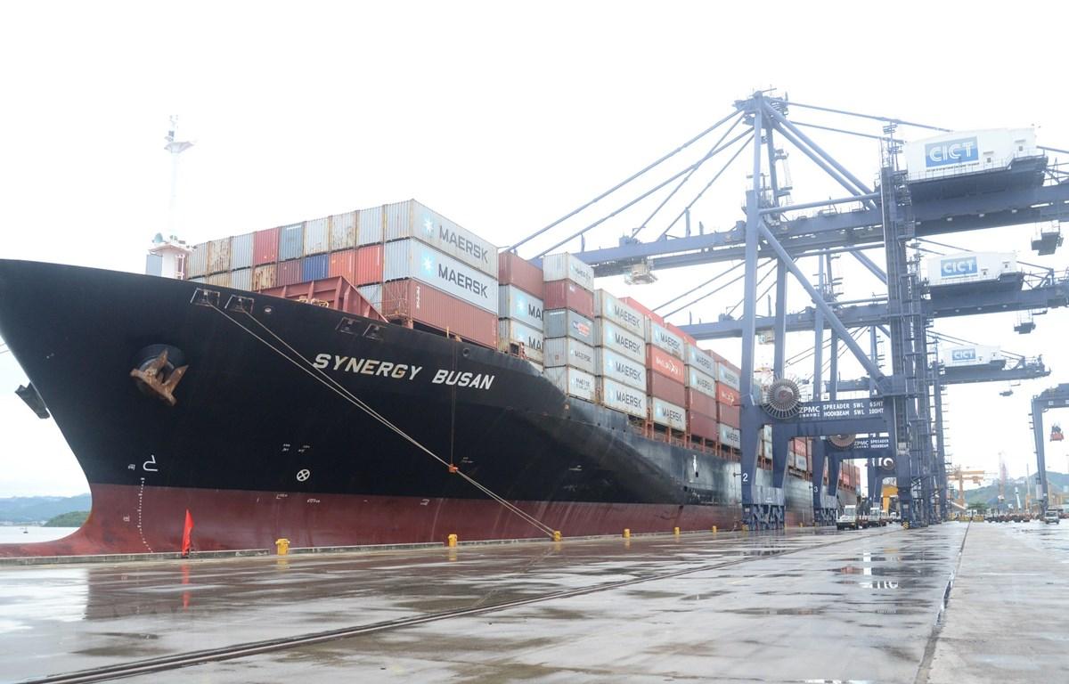 Tàu Synergy Busan đã cập cảng container quốc tế Cái Lân (CICT Cái Lân) tỉnh Quảng Ninh. (Ảnh: Thanh Vân/TTXVN)