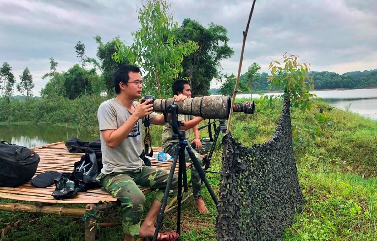 Anh Nguyễn Văn Long cùng cộng sự quan sát hoạt động của rùa Hoàn Kiếm tại hồ Đồng Mô. (Ảnh nhân vật cung cấp)