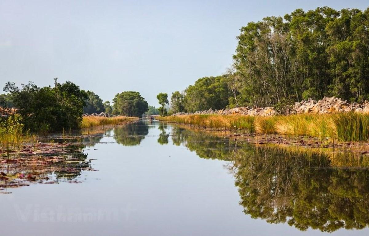 Vườn quốc gia Tràm Chim có diện tích 7.313ha. (Ảnh: Hải An/Vietnam+)