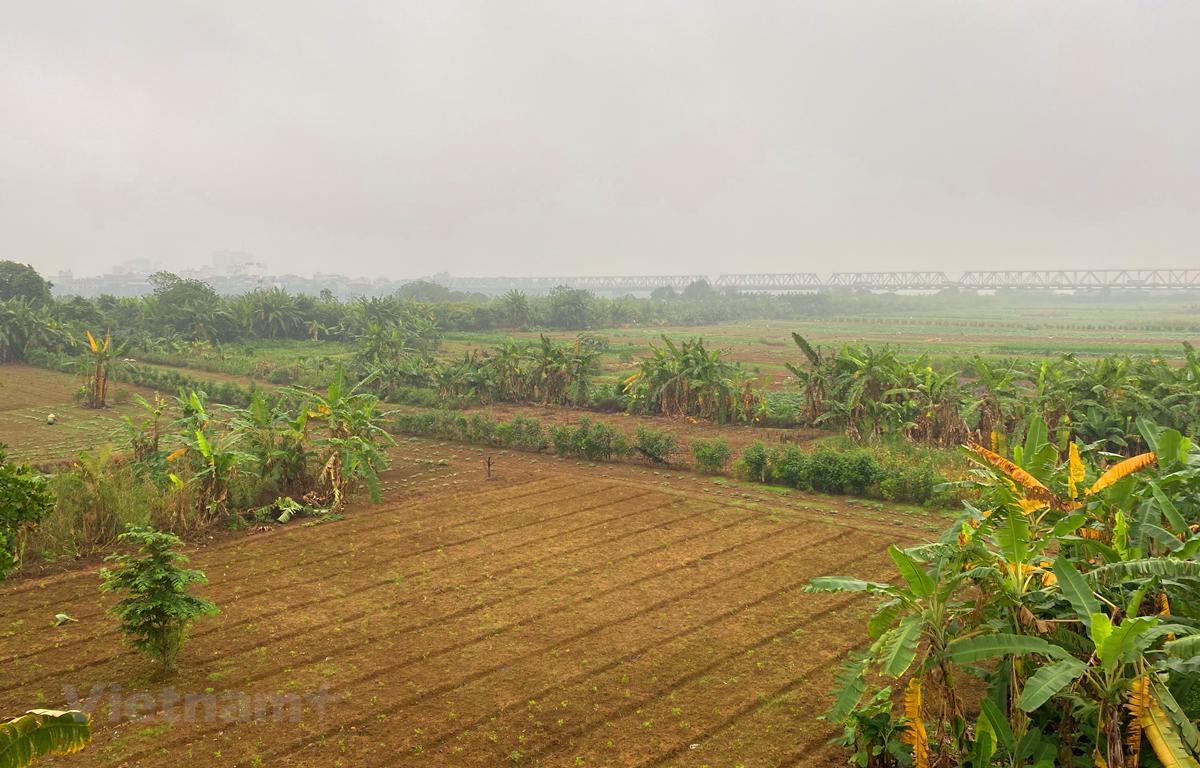Quy hoạch phân khu đô thị sông Hồng trải dài khoảng 40km. (Ảnh: Hùng Nguyễn/Vietnam+)