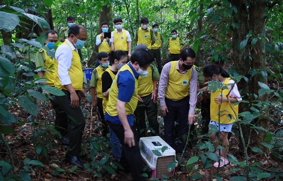 Ông Nguyễn Văn Chính (đứng ngoài cùng bên trái) dẫn đoàn tham gia hoạt động thả động vật về rừng. (Ảnh: VQG Cúc Phương)