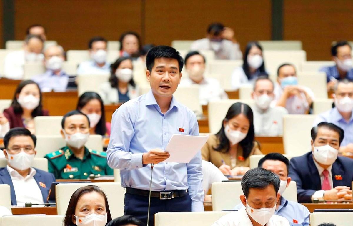 Đại biểu Quốc hội tỉnh Thanh Hóa Lê Thanh Hoàn phát biểu ý kiến. (Ảnh: Doãn Tấn/TTXVN)