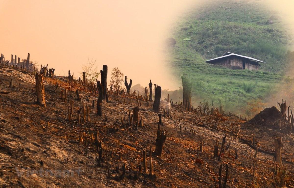 Theo báo cáo tại phiên họp Ủy ban Thường vụ Quốc Hội mới đây về thực hiện Nghị quyết số 76/2014/QH13 đẩy mạnh giảm nghèo bền vững đến năm 2020, cả nước vẫn còn 58.000 hộ dân thiếu đất ở và 303.578 hộ thiếu đất sản xuất. (Ảnh: Hùng Võ/Vietnam+)