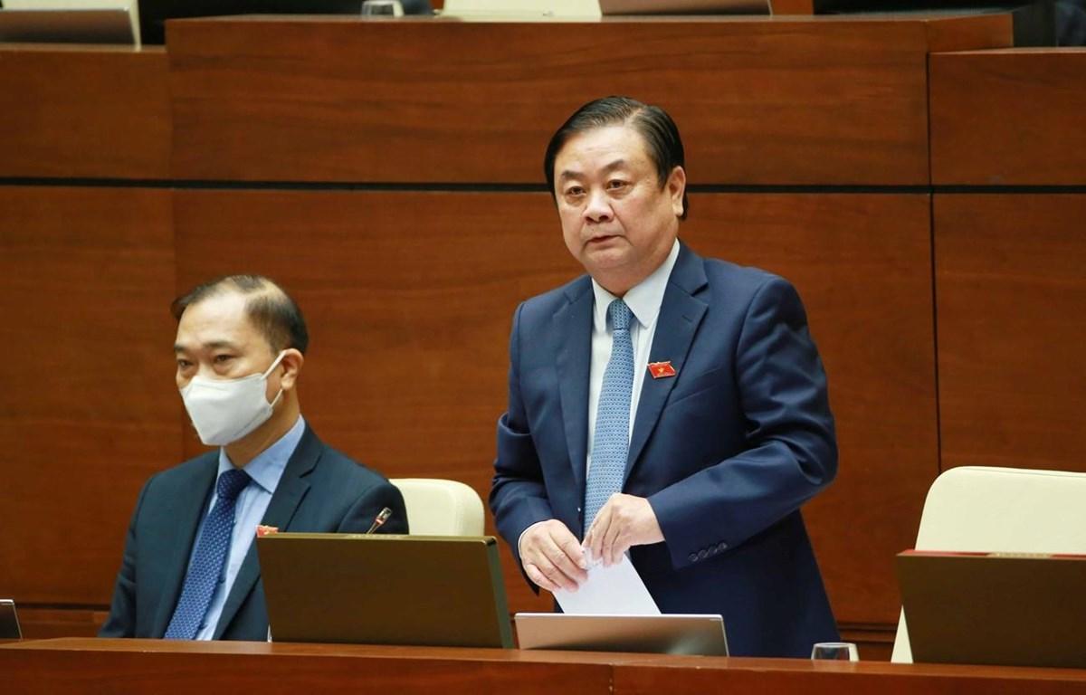 Bộ trưởng Bộ Nông nghiệp và Phát triển nông thôn Lê Minh Hoan giải trình làm rõ vấn đề Đại biểu Quốc hội nêu. (Ảnh: Phương Hoa/TTXVN)