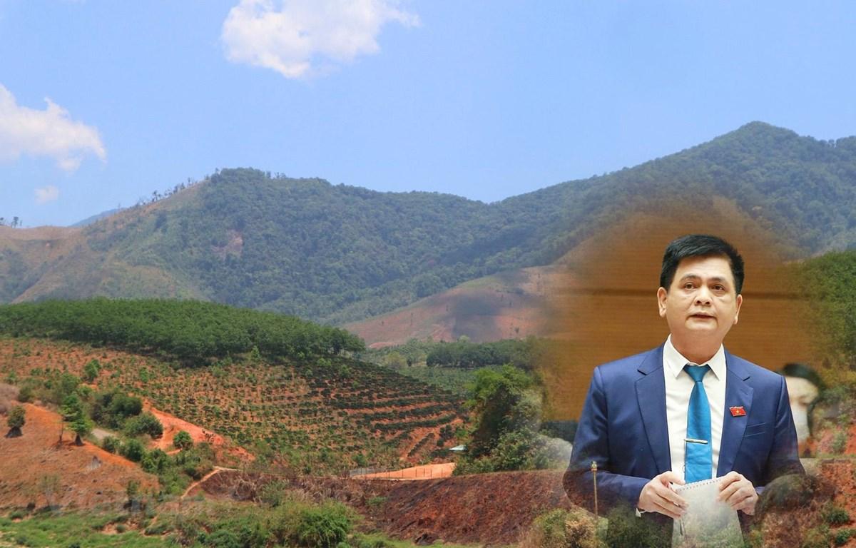 Bố trí đất ở, đất sản xuất cho đồng bào dân tộc thiểu số là việc rất quan trọng. (Ảnh: Hùng Võ/Vietnam+)