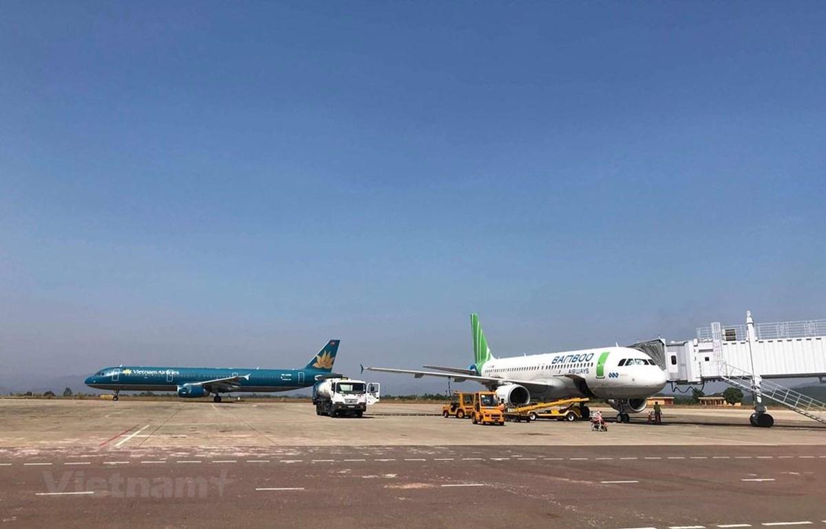 Vietnam Airlines và Bamboo Airways đều đưa ra các kế hoạch và lộ trình để mở đường bay thẳng đến Mỹ. (Ảnh: Việt Hùng/Vietnam+)