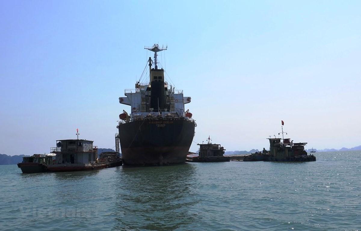 Đội tàu biển đang đứng trước nguy cơ bị mất thị phần do nguồn hàng bị san bớt sang vận tải sông pha biển. (Ảnh: Việt Hùng/Vietnam+)