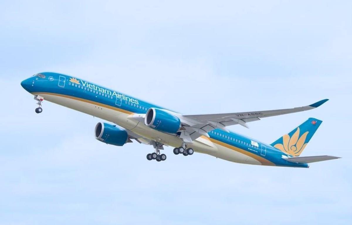 Máy bay của hãng hàng không Vietnam Airlines. (Ảnh: Đức Anh)