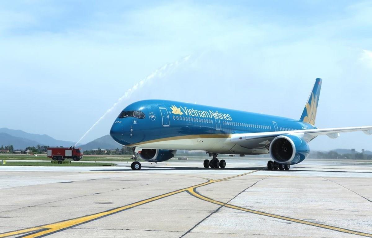 Đội tàu bay của hãng hàng không Vietnam Airlines. (Ảnh: CTV/Vietnam+)