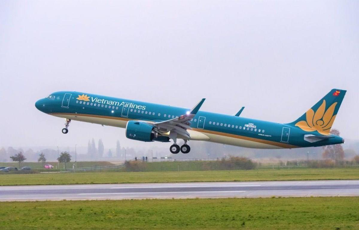 Máy bay của hãng hàng không Vietnam Airlines. (Ảnh: CTV.Vietnam+)