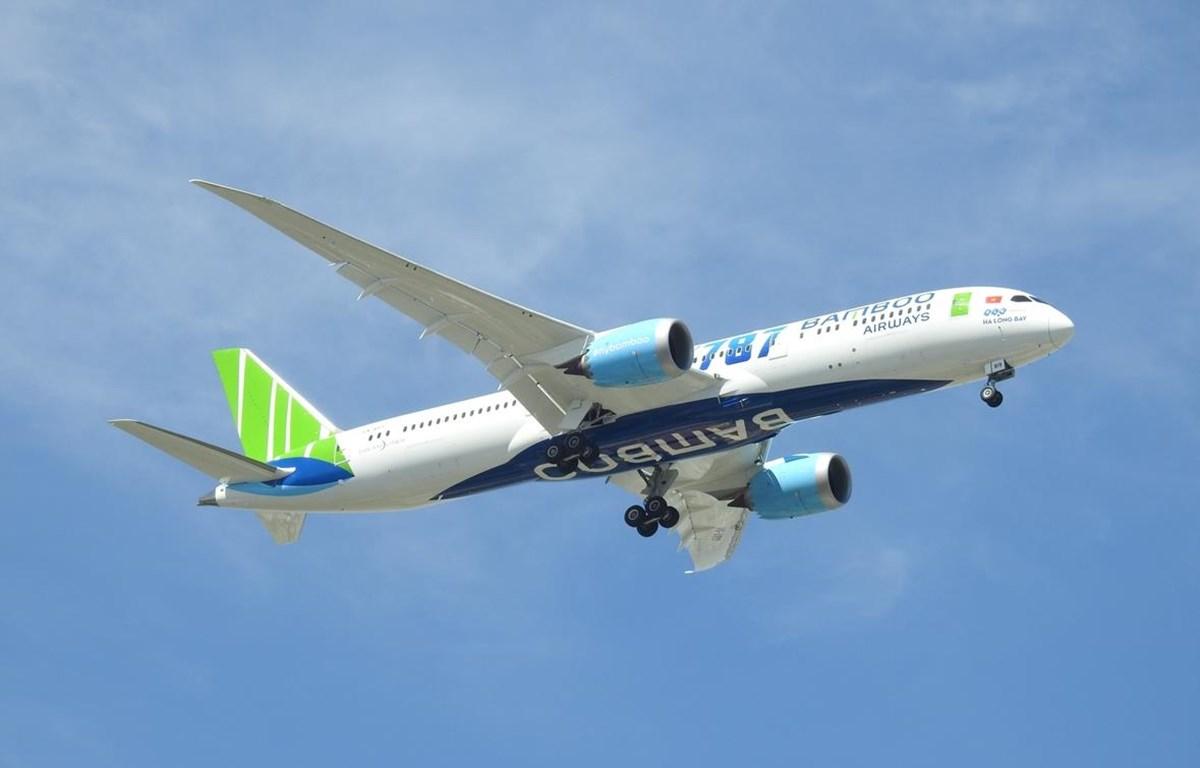 Sau đúng một năm cất cánh, lợi nhuận trước thuế của hãng hàng không Bamboo Airways đạt 303 tỷ đồng trong năm 2019 ước. (Ảnh: CTV/Vietnam+)