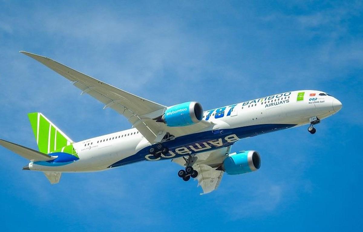 Máy bay Boeing Dreamliner 787-9 của hãng hàng không Bamboo Airways. (Ảnh: CTV/Vietnam+)