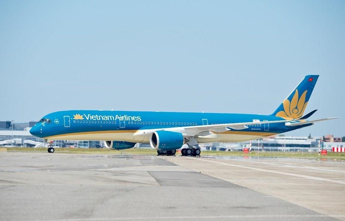 Máy bay của hãng hàng không Vietnam Airlines bay từ Hàn Quốc về Việt Nam sẽ được khử trùng nhằm tránh lây lan dịch COVID-19 (Ảnh: Anh Tuấn/Vietnam+)