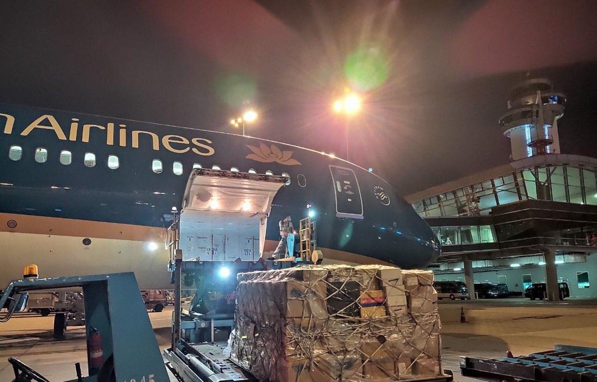 Vietnam Airlines vận chuyển miễn cước trang phục bảo hộ y tế và khẩu trang chống COVID-19. (Ảnh: CTV/Vietnam+)