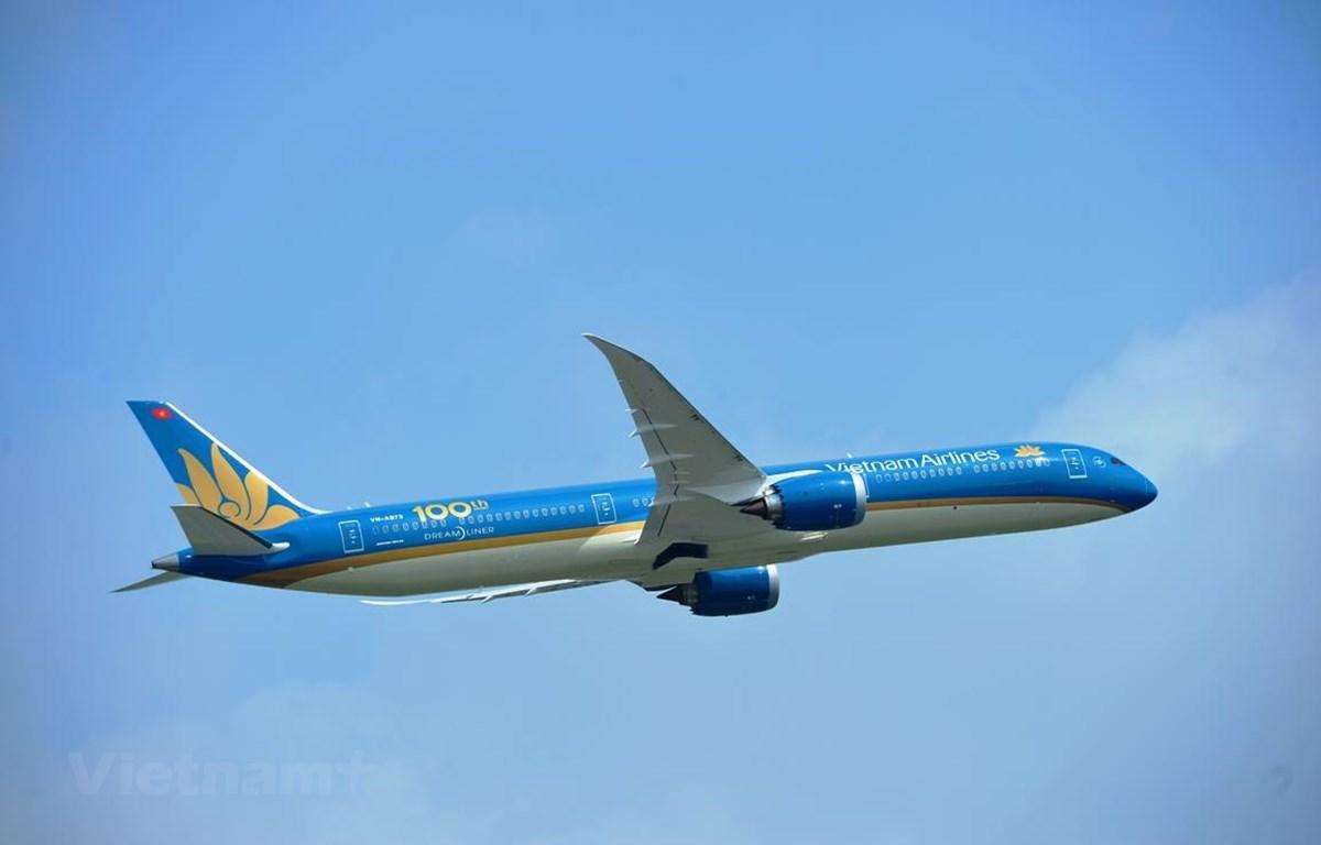 Vietnam Airlines rất cần Nhà nước hỗ trợ vốn để hãng vượt qua khó khăn do thiệt hại vì dịch COVID-19. (Ảnh: Hoàng Anh/Vietnam+)