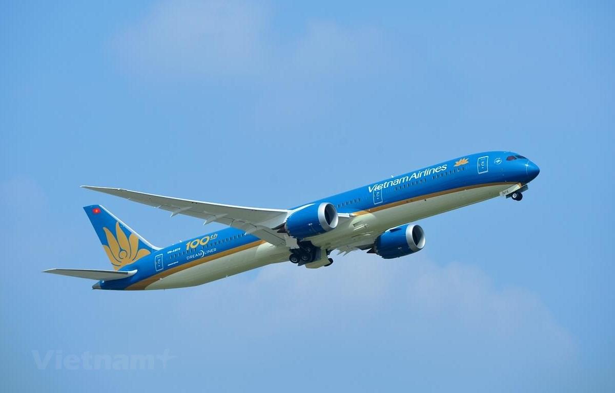 Nhà nước cần hỗ trợ vốn để Vietnam Airlines vượt qua khó khăn do thiệt hại vì dịch COVID-19. (Ảnh: Hoàng Anh/Vietnam+)