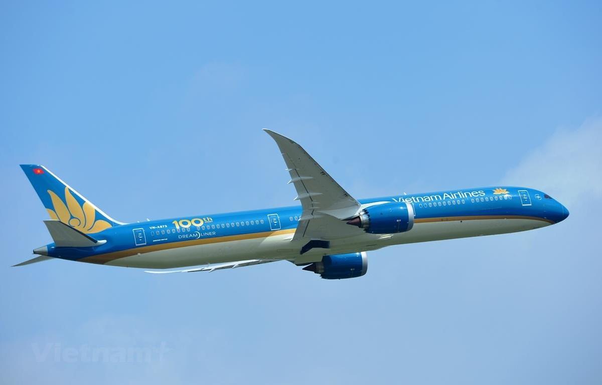 Vietnam Airlines sẽ tổ chức Đại hội đồng cổ đông thường niên năm 2020 vào ngày 28/7. (Ảnh: Hoàng Anh/Vietnam+)