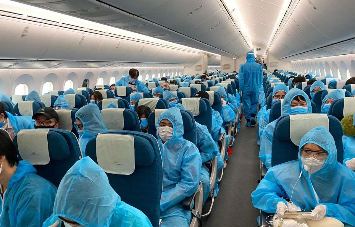 Cảnh báo lừa đảo bán vé bay đưa công dân về nước tránh dịch COVID-19