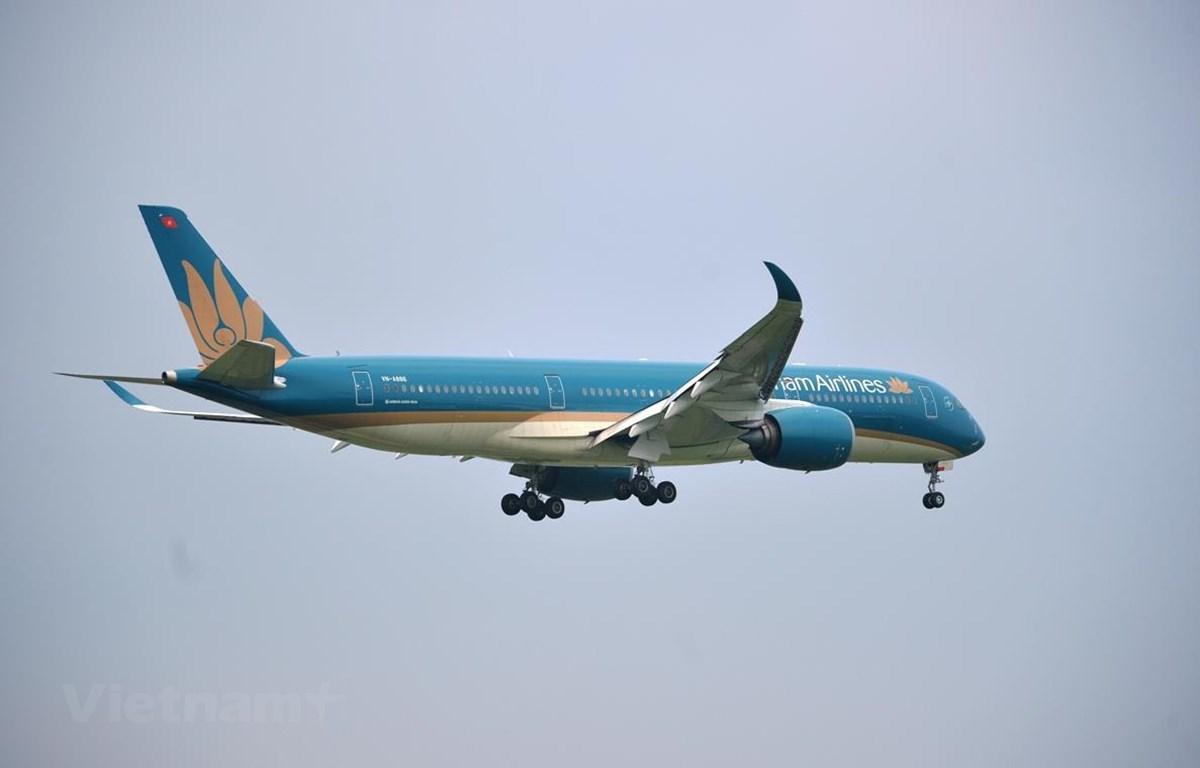 Máy bay của hãng hàng không Vietnam Airlines. (Ảnh: Hoàng Anh/Vietnam+)