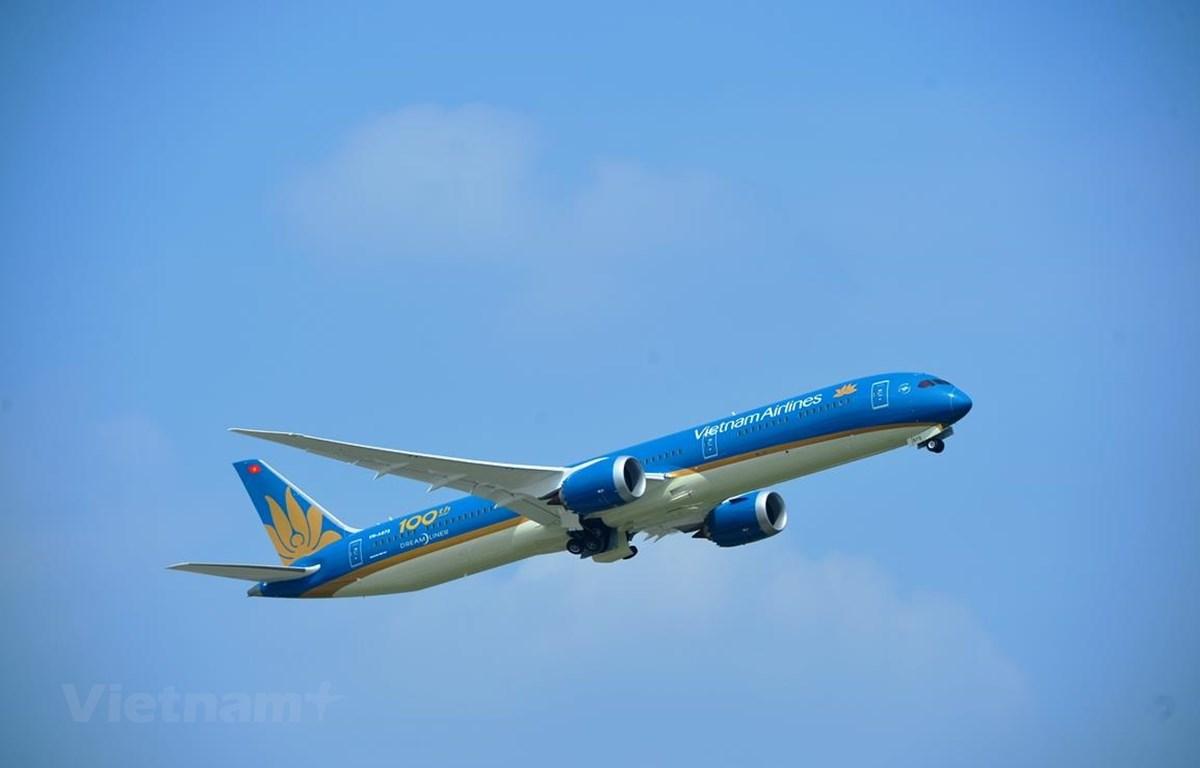 Vietnam Airlines đặt mục tiêu giữ thị phần số 1 tại nội địa. (Ảnh: CTV/Vietnam+)