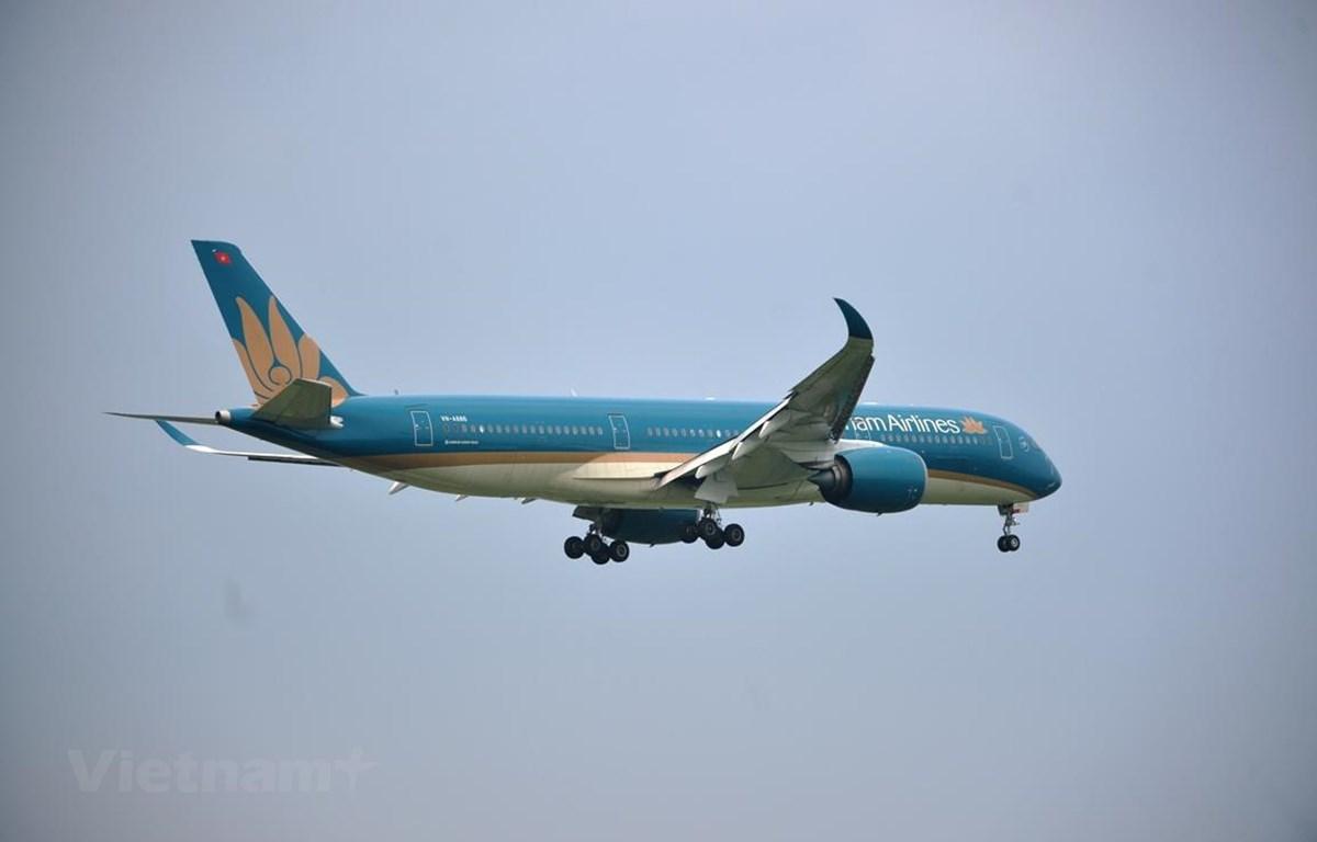Máy bay của hãng hàng không Vietnam Airlines. (Ảnh: CTV/Vietnam+)