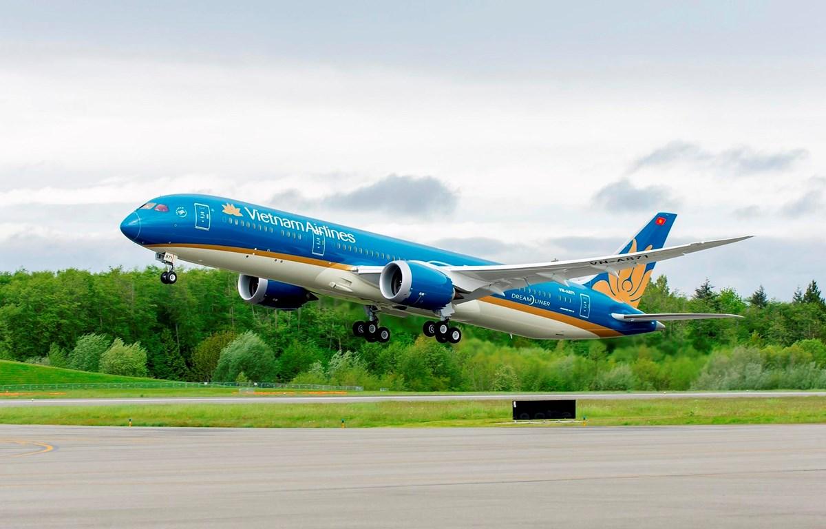 Tàu bay thân rộng hiện đại của hãng hàng không Vietnam Airlines. (Ảnh: CTV/Vietnam+)