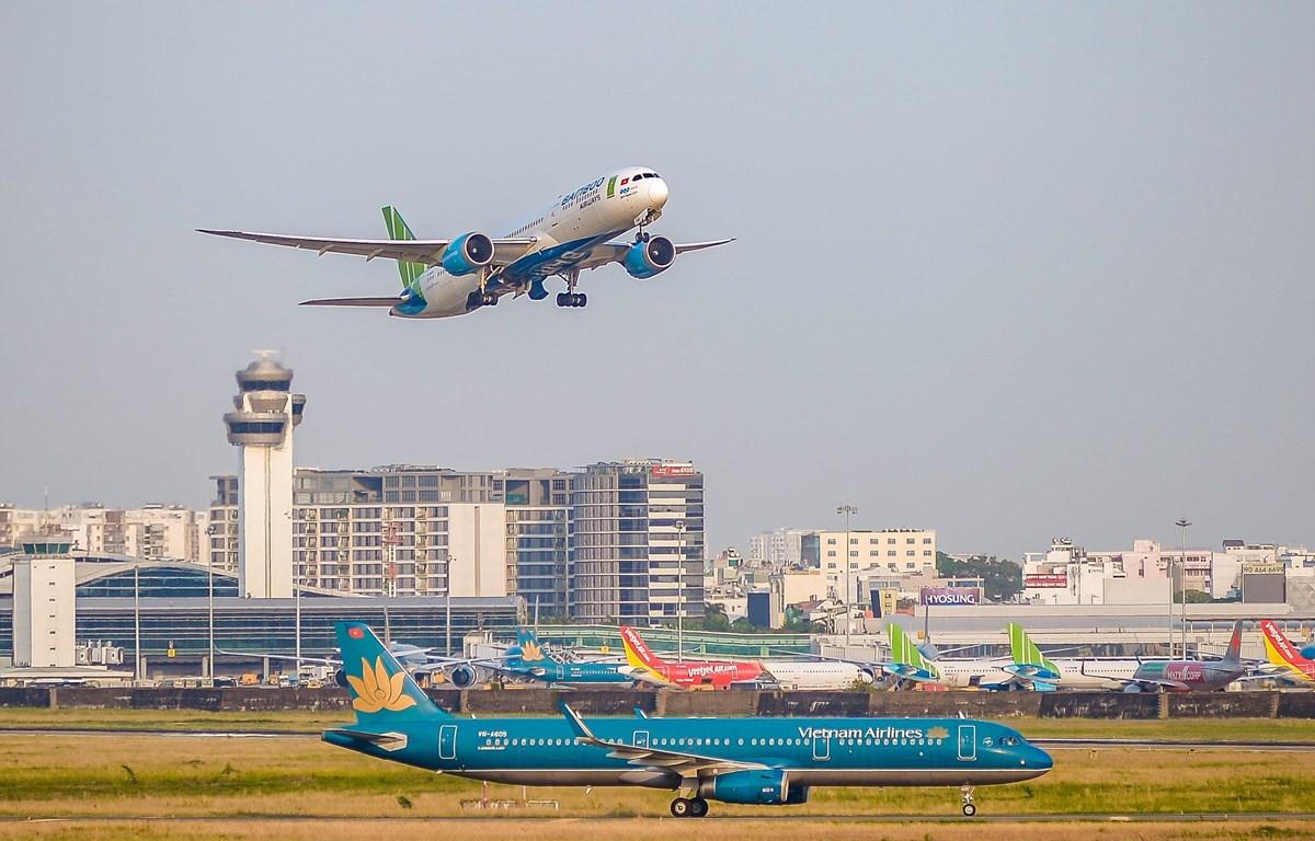 Máy bay của các hãng hàng không tại một sân bay. (Ảnh: CTV/Vietnam+)