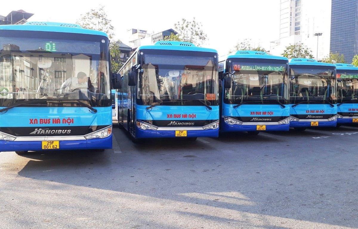 Tổng công ty Vận tải Hà Nội sẽ tiếp tục mở rộng vùng hoạt động tới các xã của thành phố trong thời gian tới. (Ảnh: CTV/Vietnam+)