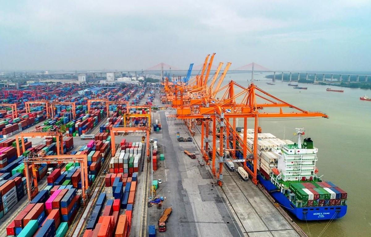Các hãng tàu phải công khai cước, phụ thu vận tải container tại Việt Nam. (Ảnh: CTV/Vietnam+)